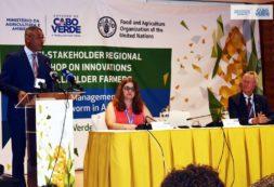 MAA em parceria com a FAO promove workshop sobre gestão sustentável da lagarta do cartucho do Milho