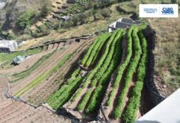 Ministro de Agricultura e Ambiente satisfeito com as obras do sistema de abastecimento de água nas localidades do Município de Ribeira Grande